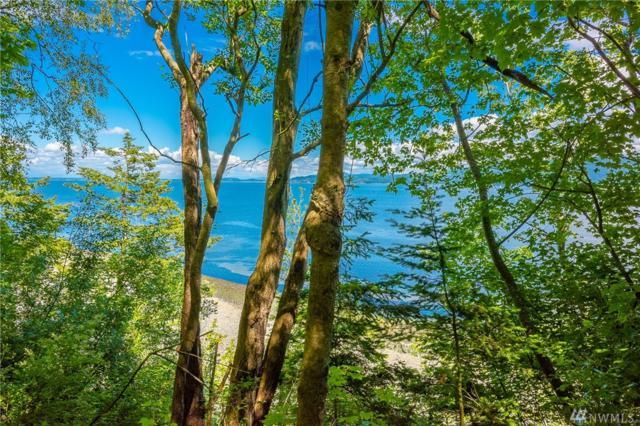 72 Eliza Island, Bellingham, WA 98226 (#1469213) :: Ben Kinney Real Estate Team