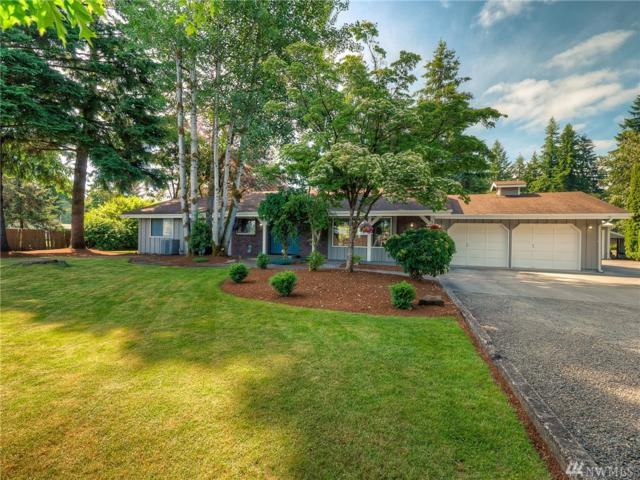 5441 191st Ave SW, Rochester, WA 98579 (#1469385) :: Platinum Real Estate Partners