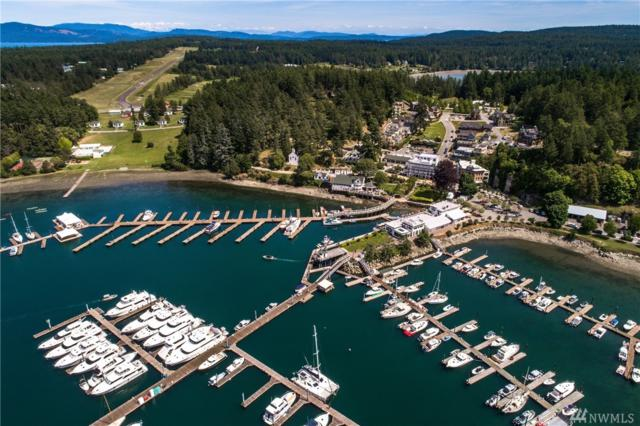 83 Captain Garthney Lane, San Juan Island, WA 98250 (#1469536) :: Northern Key Team
