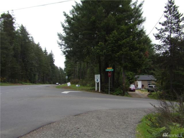 270 E Road Of Tralee, Shelton, WA 98584 (#1469713) :: Kimberly Gartland Group