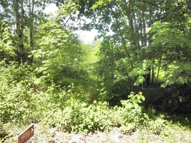 2 Misty Hill Rd, Toutle, WA 98649 (#1470302) :: Kimberly Gartland Group