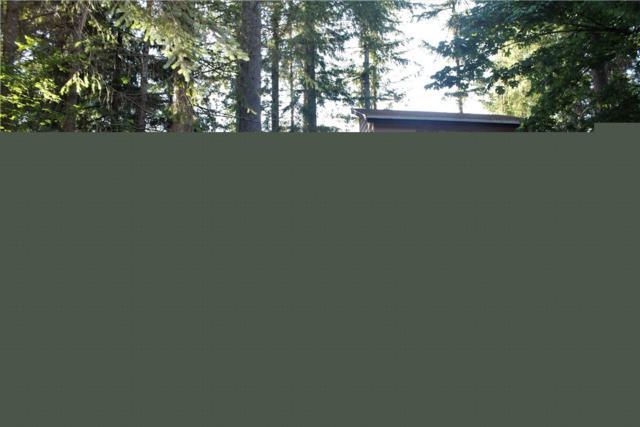 41323 Ajer Dr, Gold Bar, WA 98251 (#1470531) :: Kimberly Gartland Group