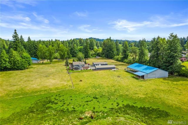 6716 Fish Pond Creek Dr SW, Olympia, WA 98512 (#1474681) :: NW Home Experts