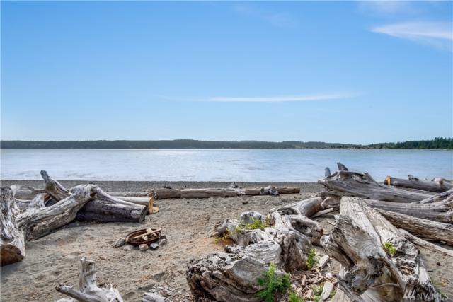 579 Sundin Dr, Camano Island, WA 98282 (#1475525) :: Ben Kinney Real Estate Team
