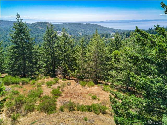 0-XXX Capron Rd, San Juan Island, WA 98250 (#1477818) :: Canterwood Real Estate Team