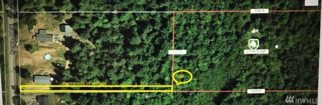 15410 Runyon Rd SE, Rainier, WA 98576 (#1478126) :: NW Home Experts