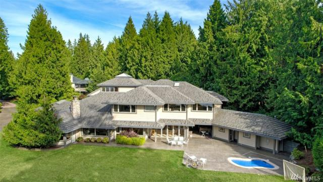 21020 Snag Island Dr E, Lake Tapps, WA 98391 (#1478402) :: Real Estate Solutions Group