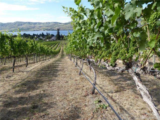 20 Summerset Vista, Manson, WA 98831 (MLS #1478740) :: Nick McLean Real Estate Group