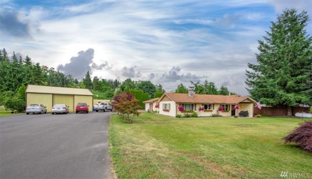 117 Damron Rd, Mossyrock, WA 98564 (#1479317) :: Better Properties Lacey