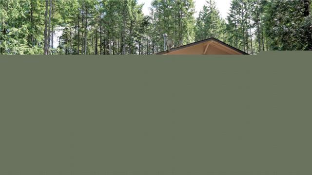 440 E Ballantrae Dr, Shelton, WA 98584 (#1482065) :: Platinum Real Estate Partners