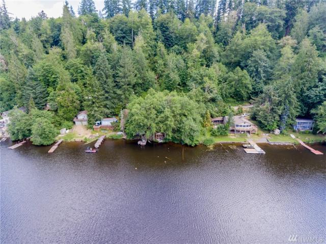 38820 Ski Park Rd E, Eatonville, WA 98328 (#1482467) :: Real Estate Solutions Group