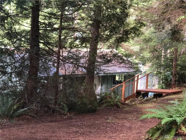 370 Harrington Dr, Quilcene, WA 98376 (#1482953) :: Better Properties Lacey