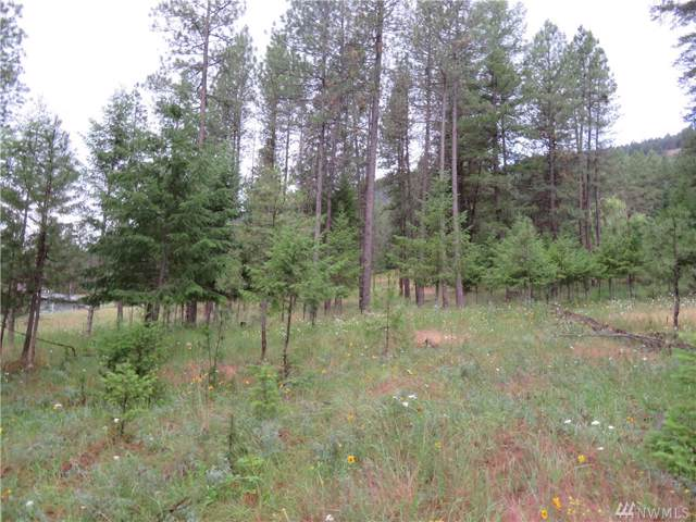 0-Lot 20 Kroupa Rd, Curlew, WA 99118 (#1483082) :: Canterwood Real Estate Team