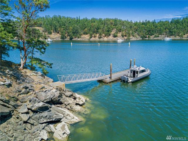0 Reid Harbor, Stuart Island, WA 98250 (#1484750) :: McAuley Homes
