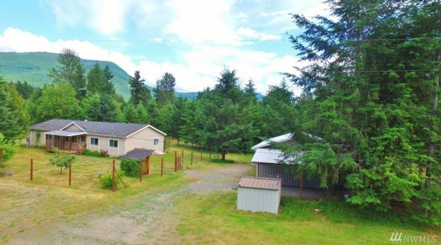 106 Wapiti Trail, Packwood, WA 98361 (#1485044) :: Platinum Real Estate Partners