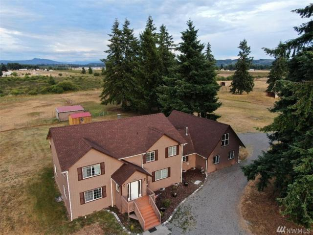 16636 Sheldon Lane SW, Rochester, WA 98579 (#1485066) :: Platinum Real Estate Partners