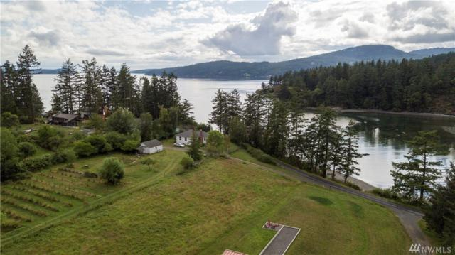 173 E.J. Young Road, Orcas Island, WA 98245 (#1487414) :: Real Estate Solutions Group