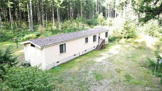 18640 Sorenson Rd SE, Yelm, WA 98597 (#1487979) :: Mosaic Home Group