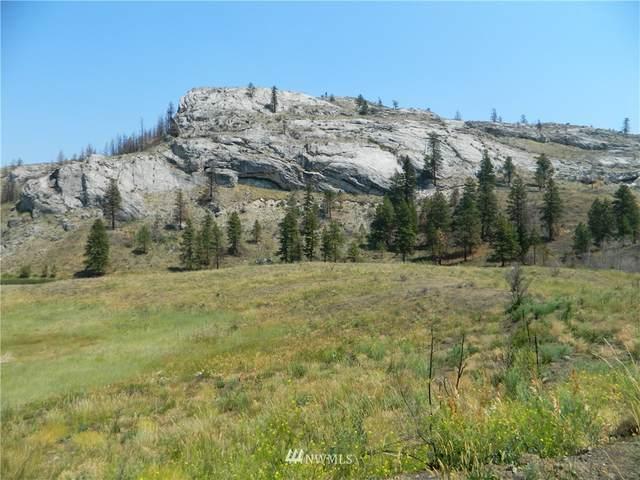 111 Tbd Palmer Mountain Road, Tonasket, WA 98855 (#1489570) :: The Shiflett Group