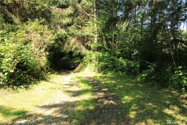 999 Dowans Creek Rd, Forks, WA 98331 (#1489915) :: Mosaic Home Group