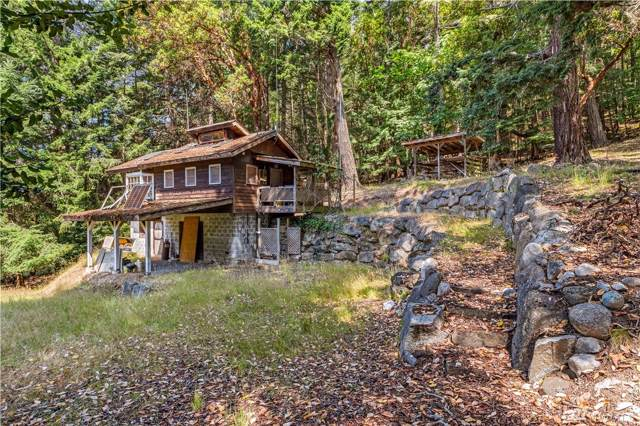 592 South Side Rd, Stuart Island, WA 98250 (#1493545) :: Real Estate Solutions Group