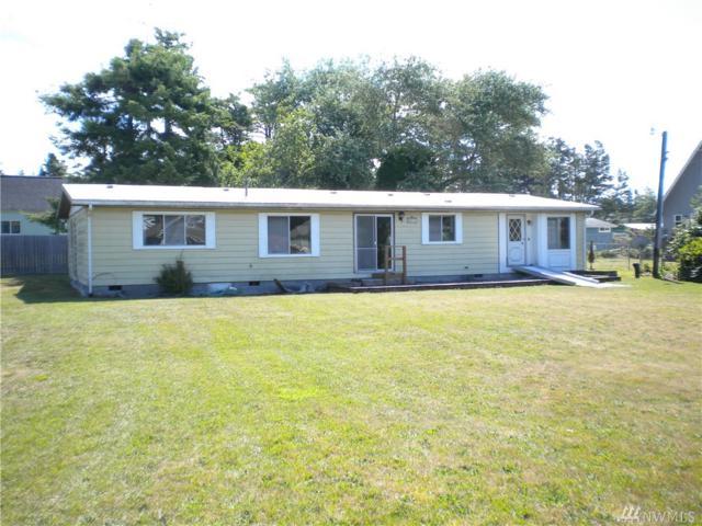 26810 N Place, Ocean Park, WA 98640 (#1494144) :: Mosaic Home Group