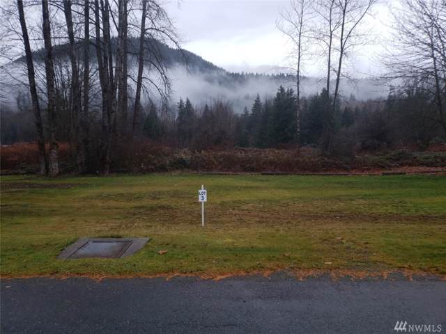 204 Old Cascade Hwy E, Skykomish, WA 98288 (#1494386) :: Hauer Home Team