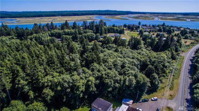 5-Xxx State Route 105, Aberdeen, WA 98520 (#1494895) :: The Kendra Todd Group at Keller Williams