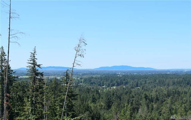 8400 N Pass Rd S, Nooksack, WA 98247 (#1495056) :: Better Homes and Gardens Real Estate McKenzie Group