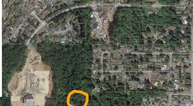 14 Bass St, Bellingham, WA 98225 (MLS #1495168) :: Lucido Global Portland Vancouver