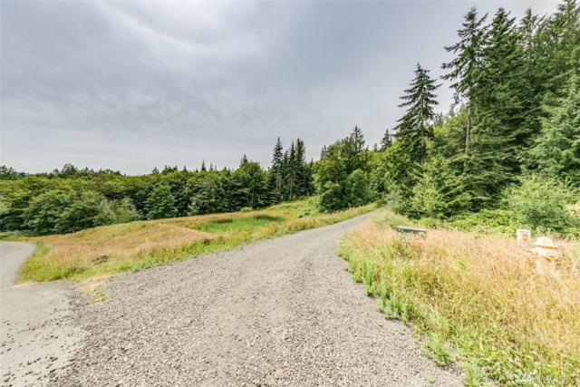 999 Elk Pass Rd Lot 1, Sequim, WA 98382 (#1495424) :: Alchemy Real Estate