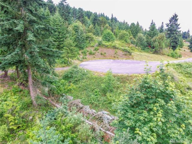 0-Lot 11 High View Way, Sequim, WA 98382 (#1495431) :: Canterwood Real Estate Team