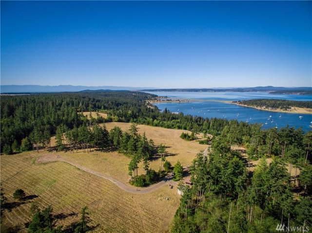 123 Dragon Run Rd, Lopez Island, WA 98261 (#1496834) :: Keller Williams Realty