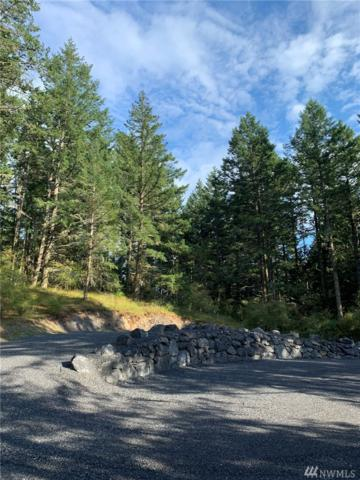 30 Tin Cup Trail, Friday Harbor, WA 98250 (#1496974) :: Canterwood Real Estate Team
