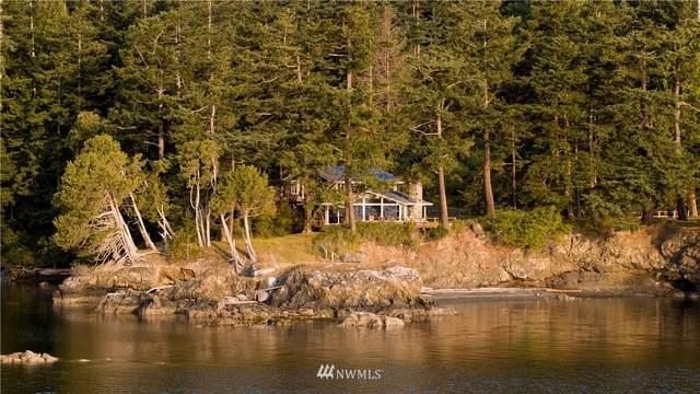 987 Hawkins Road, Orcas Island, WA 98245 (#1497873) :: Costello Team