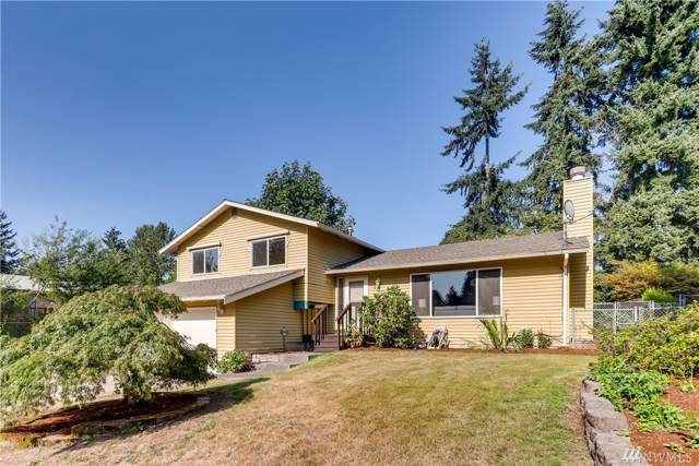 1602 Olympia Ave SE, Renton, WA 98058 (#1498957) :: Alchemy Real Estate