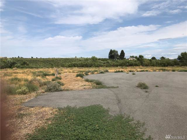 0-Lot 10 Columbia View Dr, Brewster, WA 98812 (#1506418) :: Real Estate Solutions Group