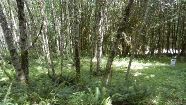 0 Fallert Rd, Kalama, WA 98625 (#1506436) :: KW North Seattle