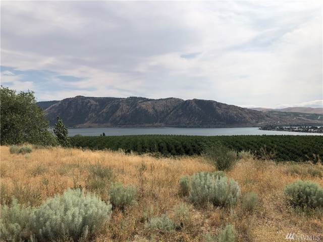 0-LOT 13 Columbia Dr, Brewster, WA 98812 (#1506449) :: Real Estate Solutions Group
