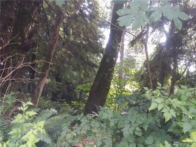 31416 358th Ave SE, Ravensdale, WA 98051 (#1507396) :: Real Estate Solutions Group
