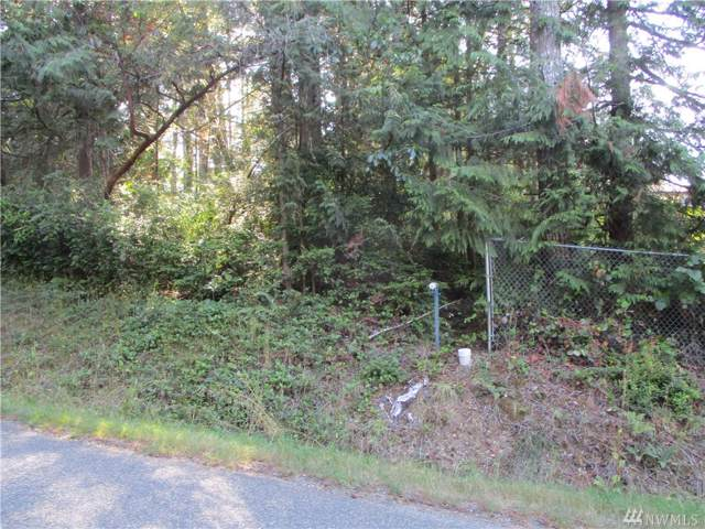 31 E Twanoh Falls Dr, Belfair, WA 98528 (#1507785) :: Northern Key Team