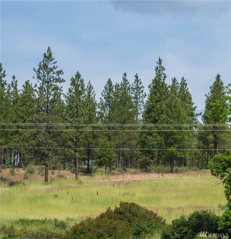 25656 Pine Cone Ct E, Lincoln, WA 99147 (#1508502) :: Northern Key Team