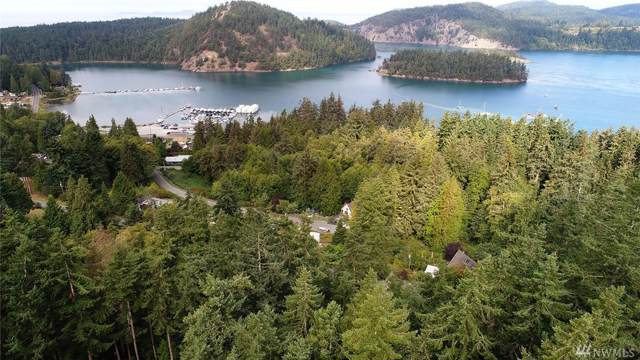 0 Ridgeline Place, Oak Harbor, WA 98277 (#1513339) :: Chris Cross Real Estate Group