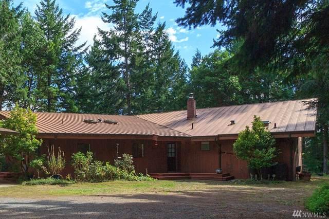 313786 Highway 101, Brinnon, WA 98320 (#1515323) :: Chris Cross Real Estate Group