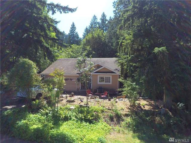 6 Doe Ct, Bellingham, WA 98229 (#1518159) :: Hauer Home Team