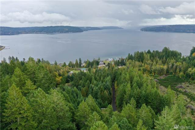 3 N Hoodcastle Dr, Shelton, WA 98584 (#1524696) :: Real Estate Solutions Group