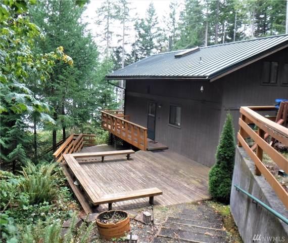 121 Tog Rd, Brinnon, WA 98320 (#1525386) :: Chris Cross Real Estate Group