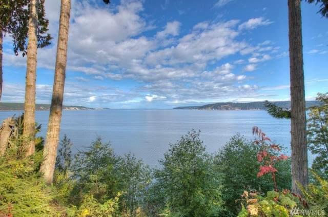 581 Bachelor Rd, Sequim, WA 98382 (#1526999) :: KW North Seattle