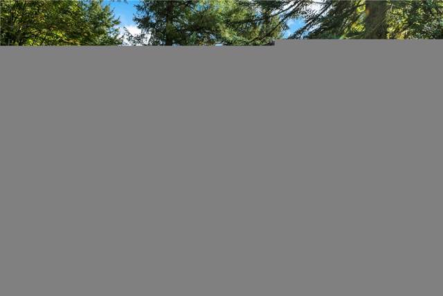 2005 Eskridge Blvd SE, Olympia, WA 98501 (#1527635) :: Chris Cross Real Estate Group