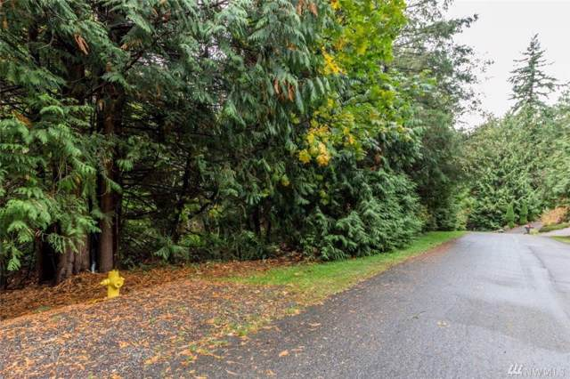 87-Lot 87 Goliah Lane, Port Ludlow, WA 98365 (#1533043) :: Better Homes and Gardens Real Estate McKenzie Group